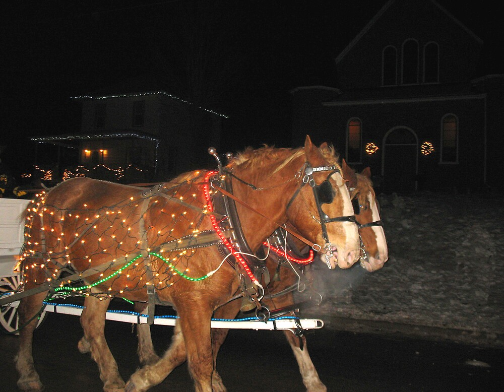 Christmas Horses by nikspix