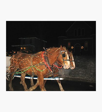 Christmas Horses Photographic Print
