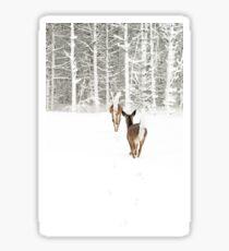 Doe In Winter Sticker