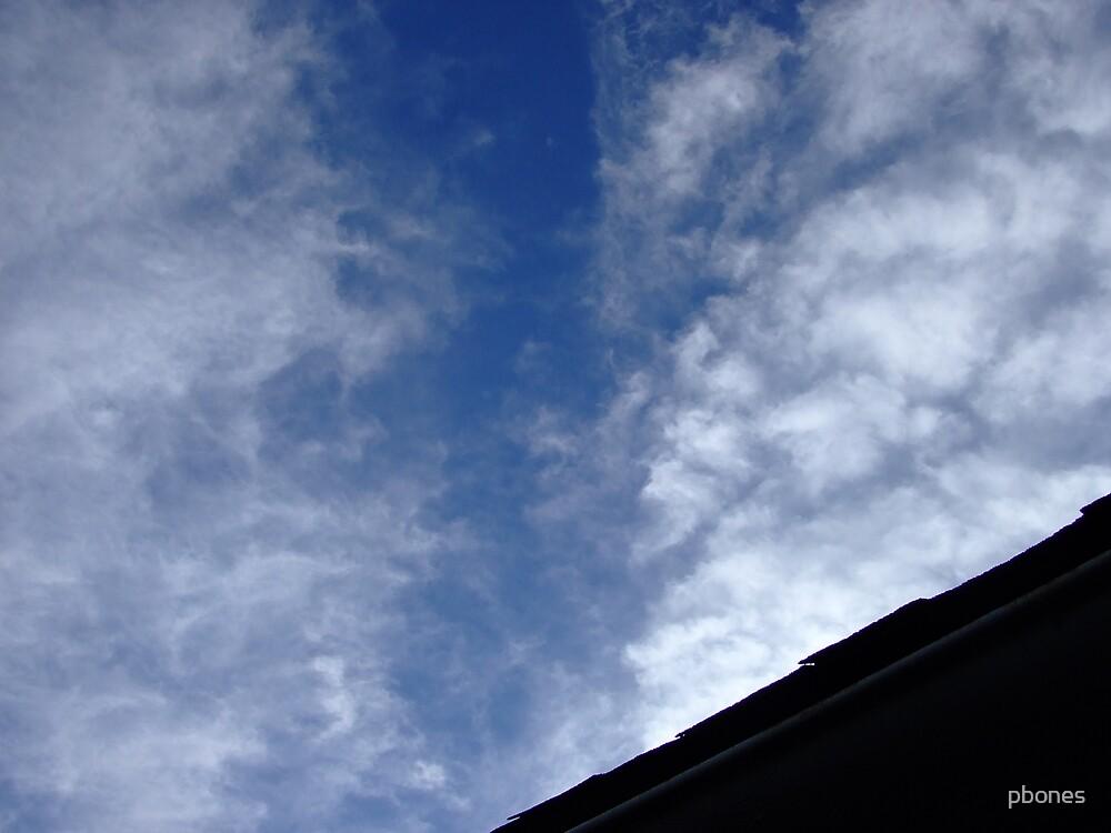 Untitled Sky 3 by pbones