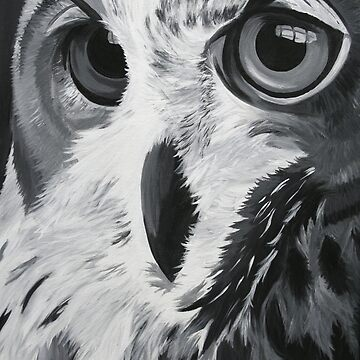 Bird of Prey by johdie