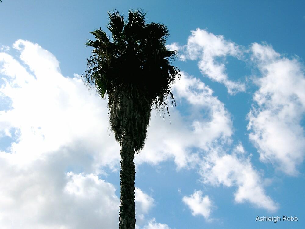California Dreaming by Ashleigh Robb