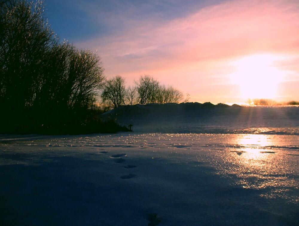 Winter Landscape by nikspix