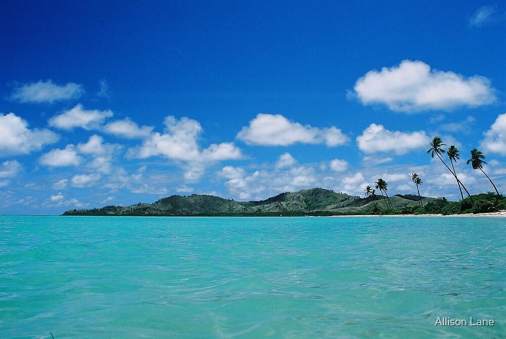 Fiji Sea by Allison Lane