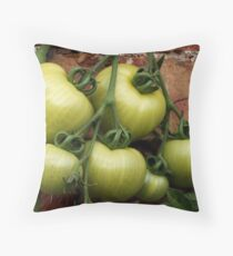 Fannie Flagg woz ere Throw Pillow
