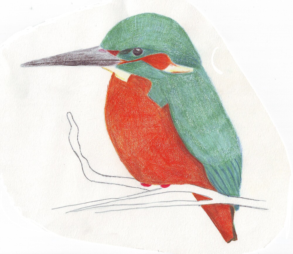 Kingfisher by Ruth Bretherick