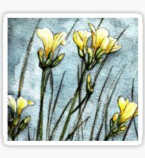 Feld Blumen in der Dämmerung Sticker