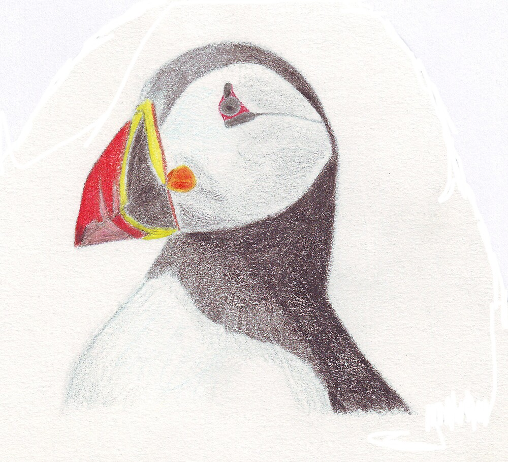 Puffin by Ruth Bretherick