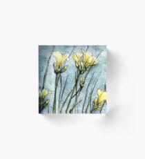 Feld Blumen in der Dämmerung Acrylblock