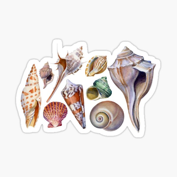 Gifts from the Sea Sticker