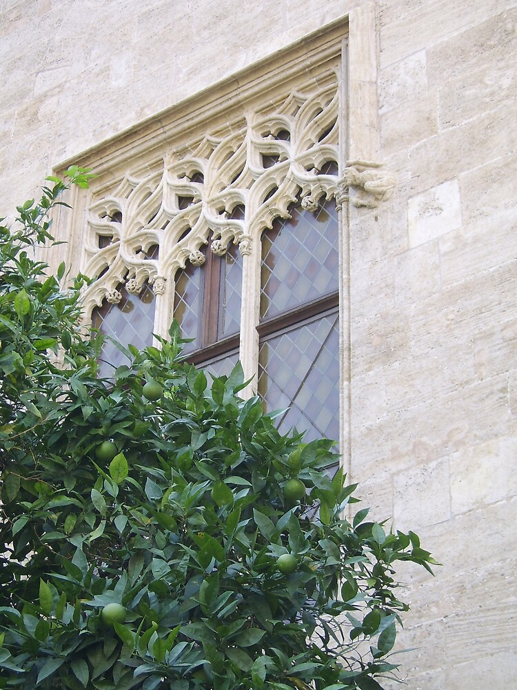 Window and an orange tree by Ruth Bretherick