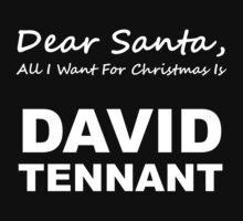 Dear Santa8
