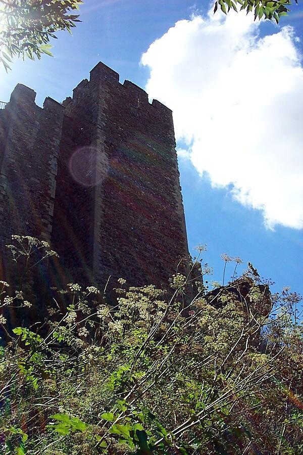 Framlingham Castle, Suffolk by Ruth Bretherick