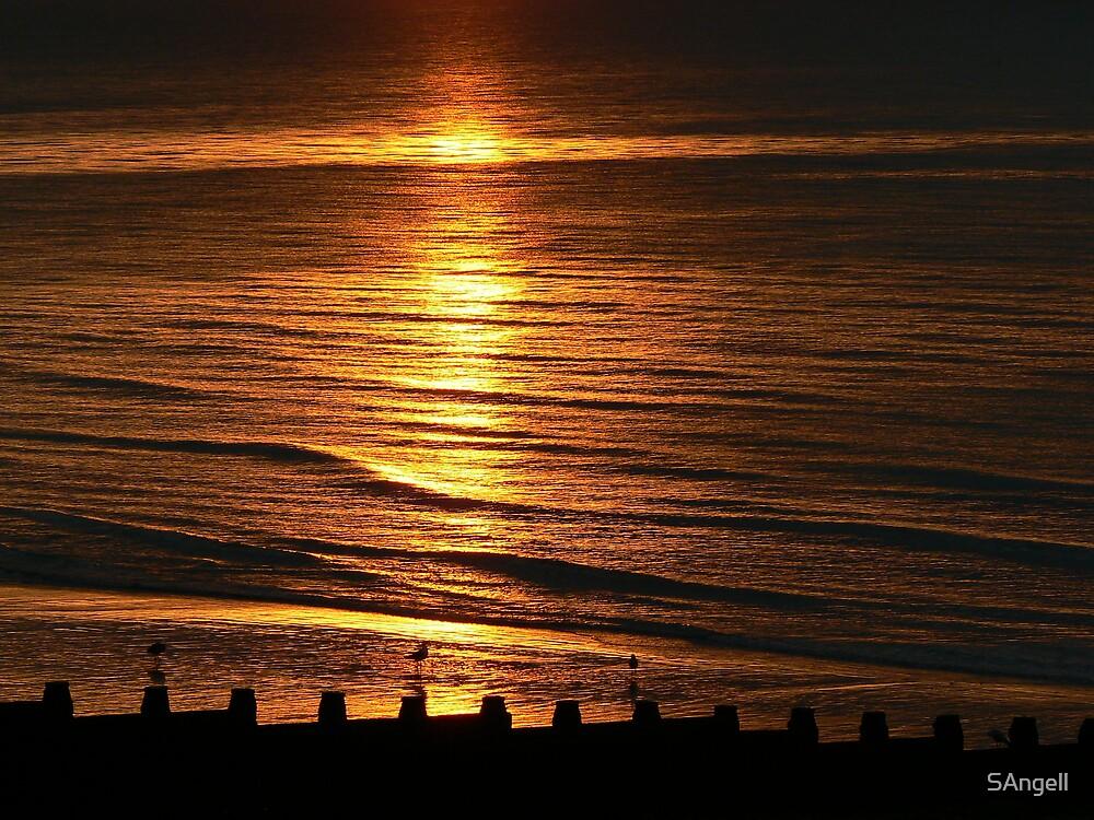 Golden Sea by SAngell