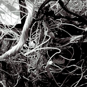 stringwork by rups