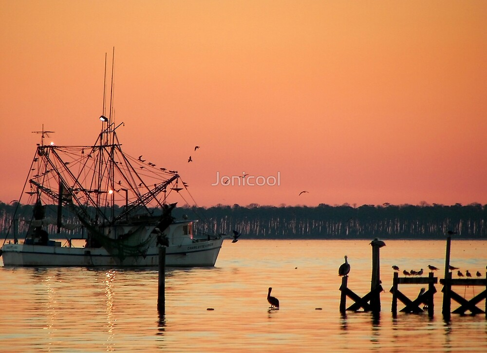 Shrimp Boat & Birds by Jonicool