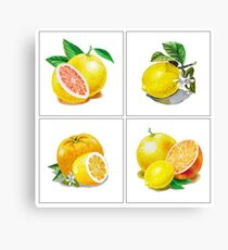 Vitamin C Canvas Print