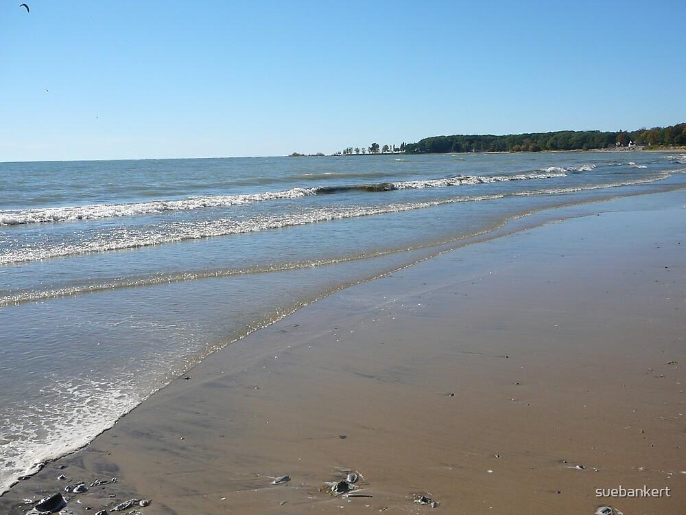 Lake Erie 3 by suebankert