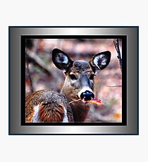 Pretty Leaf, Prettier Face! (framed for wall art/prints) Photographic Print