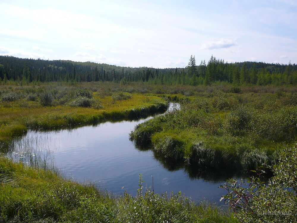 Meandering River by suebankert