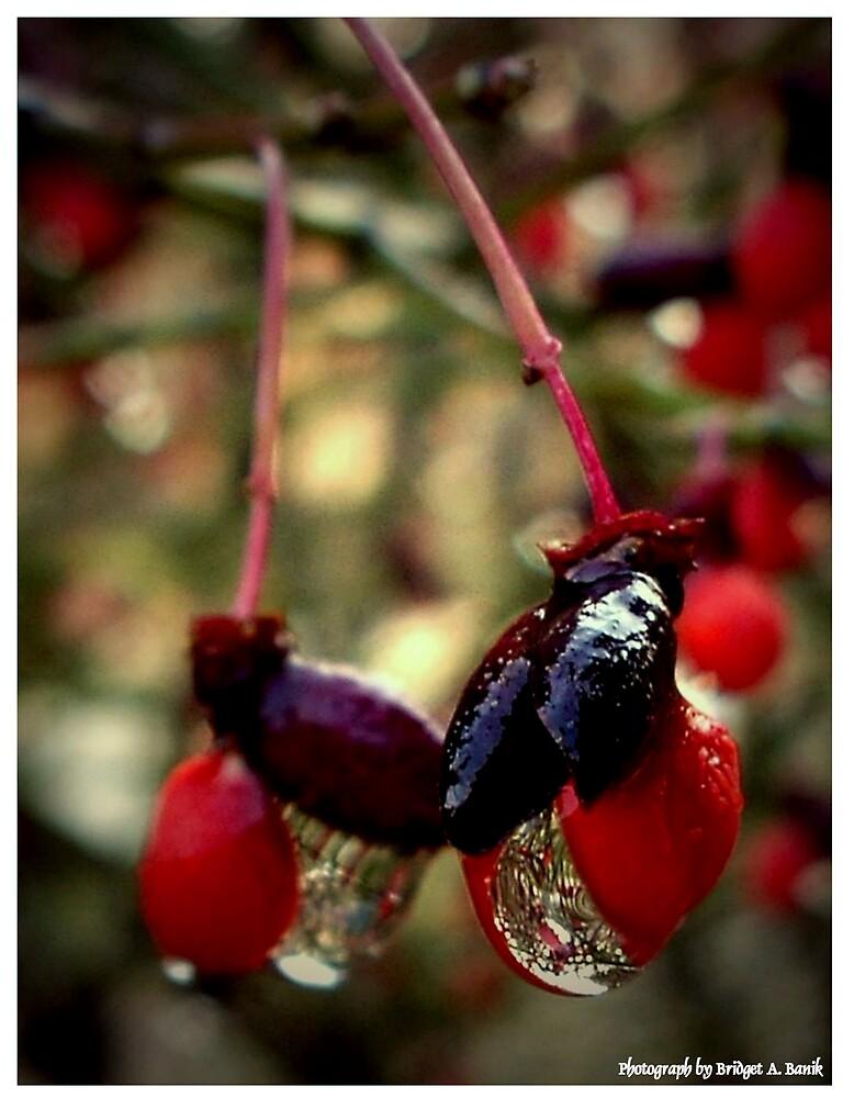 """""""The Red Berries"""" by Bridget Banik"""