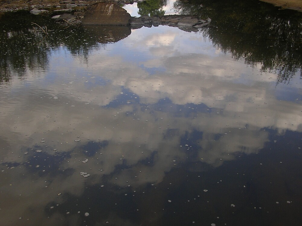 Revlection of clouds in a river by Coenraad Dean Dormehl