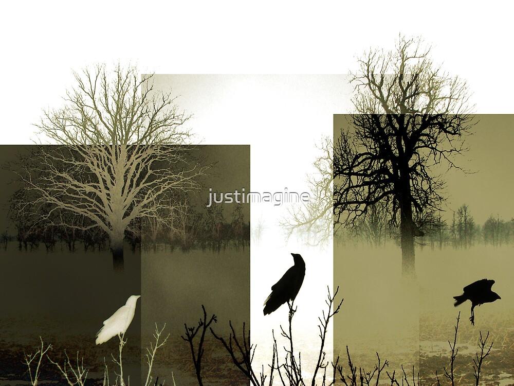 Three Crows by justimagine