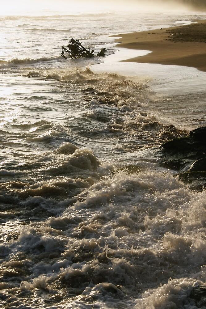 Ocean Blue? by Gregorio1