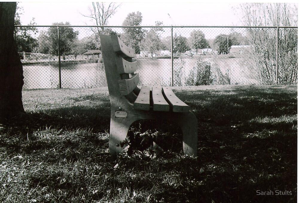 Park Bench by Sarah Stults
