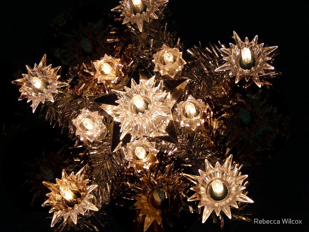 Seeing Stars by Rebecca Brann