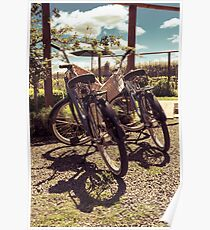 retro style bicycles - vinery tour Poster