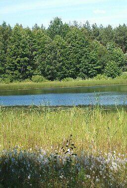 Polish lake by gemmagrace