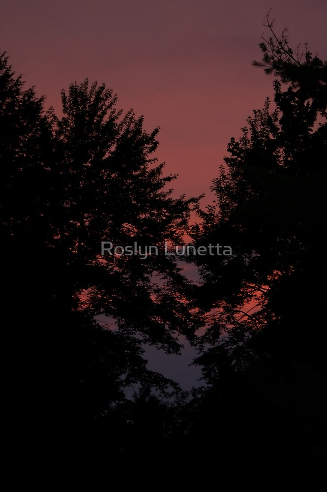 after sunset by Roslyn Lunetta