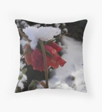 Faded Rose in Snow Throw Pillow