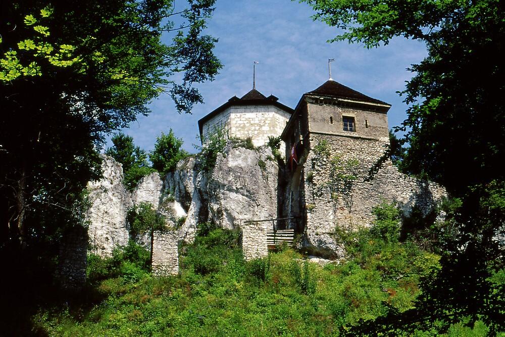 Old Castle by Rich Sirko