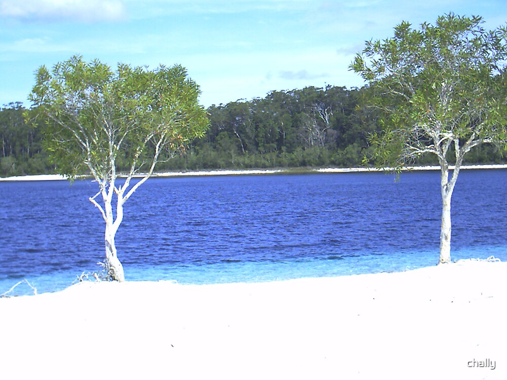 Lake McKenzie by chally