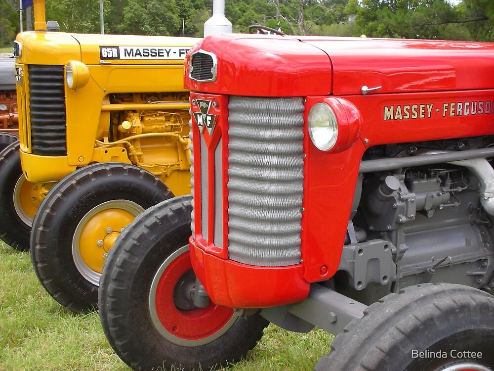 tractors by Belinda Cottee