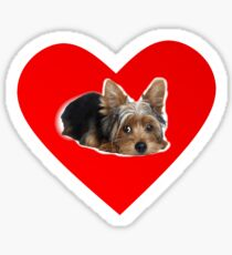 I Love my Yorkie Sticker