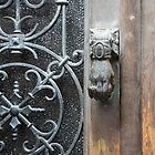 Knocker. by Anne Scantlebury