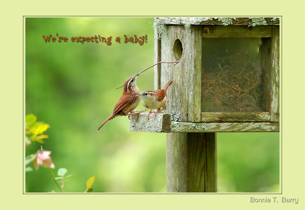 We're Expecting a Baby! by Bonnie T.  Barry