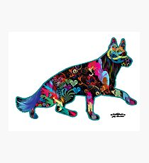 German Shepherds fill our life with Color Photographic Print