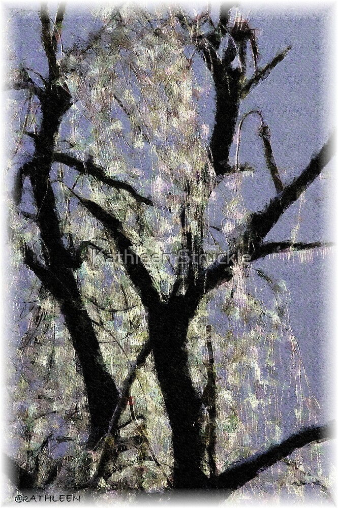 Ice On Tree by Kathleen Struckle