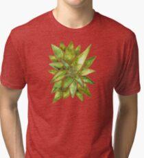 Aloe Vera – Green Palette Tri-blend T-Shirt