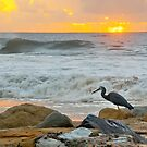 Kings Beach Dawn by AdamDonnelly