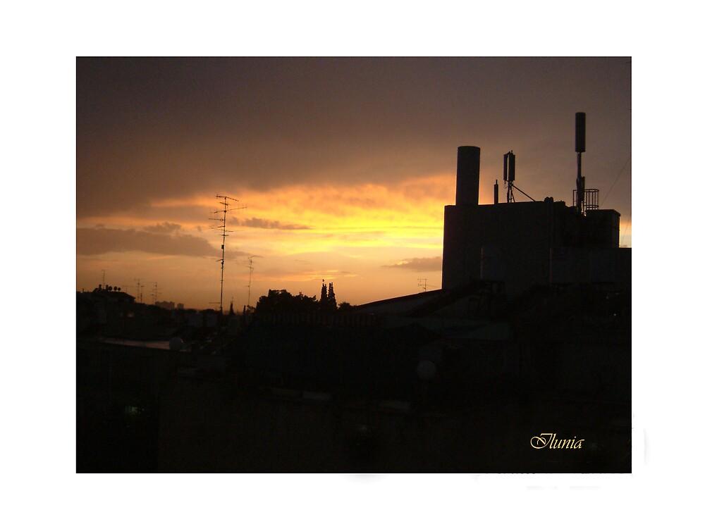 Sunset by Ilunia Felczer