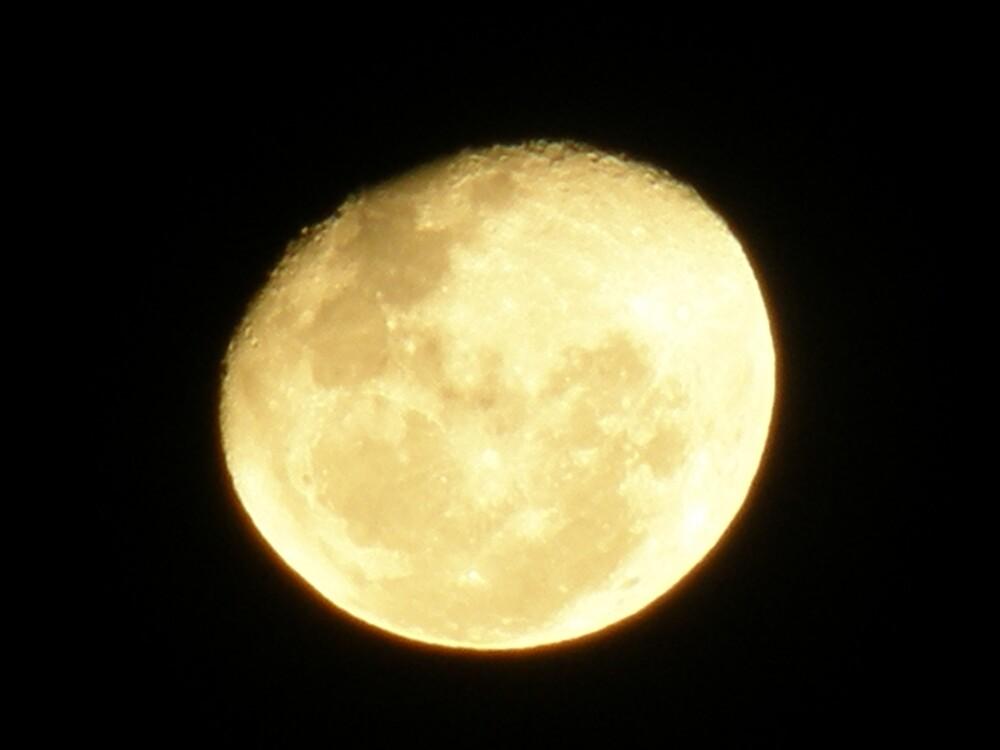 Yellow Moon by ThomasMcG