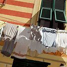 Monday is Washing Day. by malcblue