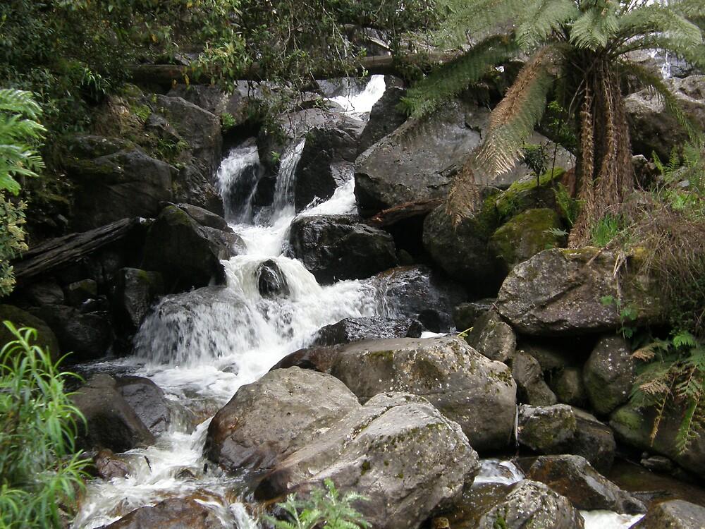 Down Stream by ThomasMcG