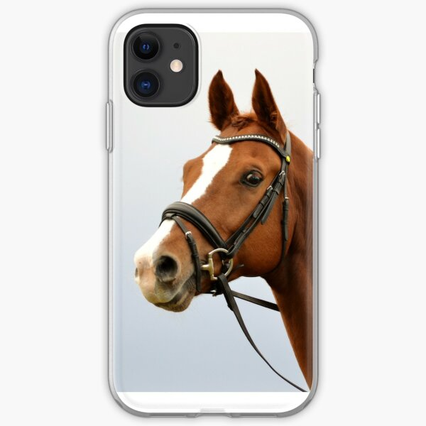 Curious horse iPhone Soft Case