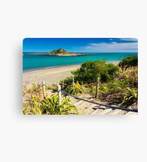 Island and the coast. Location: New Zealand Canvas Print